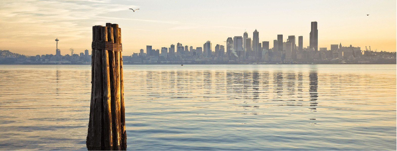 Seattle Real Estate Homes For Sale